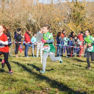 "Cross Guillaume Gomez 2016 • <a style=""font-size:0.8em;"" href=""http://www.flickr.com/photos/137596664@N05/31476075331/"" target=""_blank"">View on Flickr</a>"