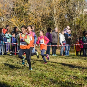 "Cross Guillaume Gomez 2016 • <a style=""font-size:0.8em;"" href=""http://www.flickr.com/photos/137596664@N05/31476074491/"" target=""_blank"">View on Flickr</a>"
