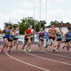 """1500m TCF - Finale Interclubs 2015 Castres • <a style=""""font-size:0.8em;"""" href=""""http://www.flickr.com/photos/137596664@N05/24273470662/"""" target=""""_blank"""">View on Flickr</a>"""