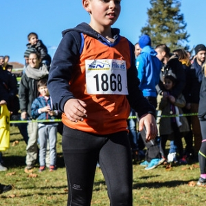 "Cross Hubert André 2017 • <a style=""font-size:0.8em;"" href=""http://www.flickr.com/photos/137596664@N05/38617438166/"" target=""_blank"">View on Flickr</a>"