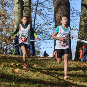 "Cross Hubert André 2017 • <a style=""font-size:0.8em;"" href=""http://www.flickr.com/photos/137596664@N05/24796822678/"" target=""_blank"">View on Flickr</a>"