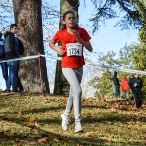 "Cross Hubert André 2017 • <a style=""font-size:0.8em;"" href=""http://www.flickr.com/photos/137596664@N05/38669445291/"" target=""_blank"">View on Flickr</a>"