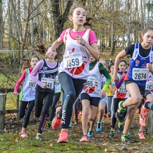 "Cross Hubert André 2017 • <a style=""font-size:0.8em;"" href=""http://www.flickr.com/photos/137596664@N05/26893468889/"" target=""_blank"">View on Flickr</a>"