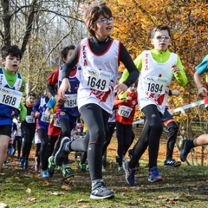 "Cross Hubert André 2017 • <a style=""font-size:0.8em;"" href=""http://www.flickr.com/photos/137596664@N05/37781363475/"" target=""_blank"">View on Flickr</a>"