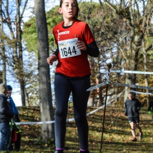 "Cross Hubert André 2017 • <a style=""font-size:0.8em;"" href=""http://www.flickr.com/photos/137596664@N05/38613327586/"" target=""_blank"">View on Flickr</a>"