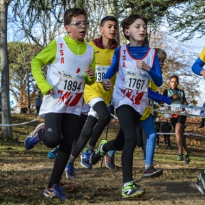 "Cross Hubert André 2017 • <a style=""font-size:0.8em;"" href=""http://www.flickr.com/photos/137596664@N05/26892603519/"" target=""_blank"">View on Flickr</a>"