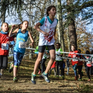 "Cross Hubert André 2017 • <a style=""font-size:0.8em;"" href=""http://www.flickr.com/photos/137596664@N05/24797100548/"" target=""_blank"">View on Flickr</a>"