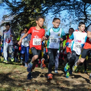 "Cross Hubert André 2017 • <a style=""font-size:0.8em;"" href=""http://www.flickr.com/photos/137596664@N05/38673438441/"" target=""_blank"">View on Flickr</a>"