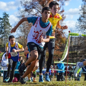 "Cross Hubert André 2017 • <a style=""font-size:0.8em;"" href=""http://www.flickr.com/photos/137596664@N05/24799267038/"" target=""_blank"">View on Flickr</a>"