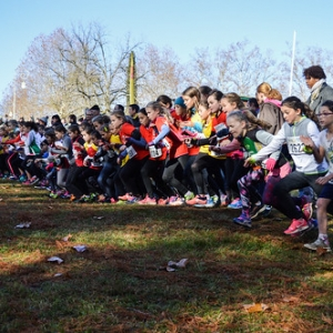 "Cross Hubert André 2017 • <a style=""font-size:0.8em;"" href=""http://www.flickr.com/photos/137596664@N05/37786045425/"" target=""_blank"">View on Flickr</a>"