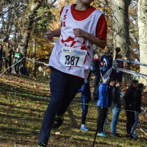 "Cross Hubert André 2017 • <a style=""font-size:0.8em;"" href=""http://www.flickr.com/photos/137596664@N05/26892705479/"" target=""_blank"">View on Flickr</a>"