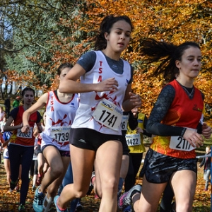 "Cross Hubert André 2017 • <a style=""font-size:0.8em;"" href=""http://www.flickr.com/photos/137596664@N05/38671269111/"" target=""_blank"">View on Flickr</a>"