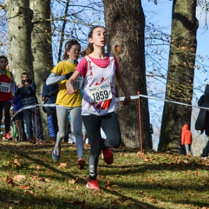 "Cross Hubert André 2017 • <a style=""font-size:0.8em;"" href=""http://www.flickr.com/photos/137596664@N05/37782009085/"" target=""_blank"">View on Flickr</a>"