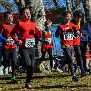 "Cross Hubert André 2017 • <a style=""font-size:0.8em;"" href=""http://www.flickr.com/photos/137596664@N05/24800872678/"" target=""_blank"">View on Flickr</a>"