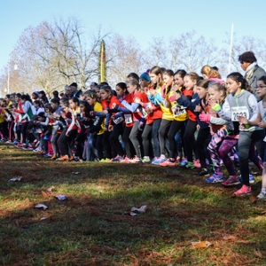 "Cross Hubert André 2017 • <a style=""font-size:0.8em;"" href=""http://www.flickr.com/photos/137596664@N05/38617827426/"" target=""_blank"">View on Flickr</a>"