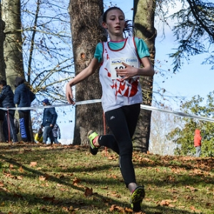 "Cross Hubert André 2017 • <a style=""font-size:0.8em;"" href=""http://www.flickr.com/photos/137596664@N05/37951731914/"" target=""_blank"">View on Flickr</a>"