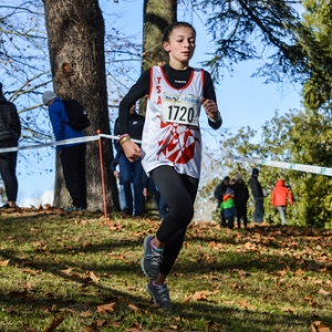 "Cross Hubert André 2017 • <a style=""font-size:0.8em;"" href=""http://www.flickr.com/photos/137596664@N05/24796698698/"" target=""_blank"">View on Flickr</a>"