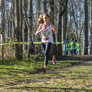 """Cross Hubert André 2016 • <a style=""""font-size:0.8em;"""" href=""""http://www.flickr.com/photos/137596664@N05/30497607283/"""" target=""""_blank"""">View on Flickr</a>"""