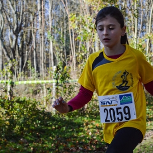 """Cross Hubert André 2016 • <a style=""""font-size:0.8em;"""" href=""""http://www.flickr.com/photos/137596664@N05/31308394545/"""" target=""""_blank"""">View on Flickr</a>"""