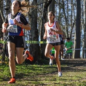 """Cross Hubert André 2016 • <a style=""""font-size:0.8em;"""" href=""""http://www.flickr.com/photos/137596664@N05/30497627723/"""" target=""""_blank"""">View on Flickr</a>"""