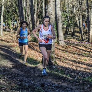 """Cross Hubert André 2016 • <a style=""""font-size:0.8em;"""" href=""""http://www.flickr.com/photos/137596664@N05/31190193131/"""" target=""""_blank"""">View on Flickr</a>"""