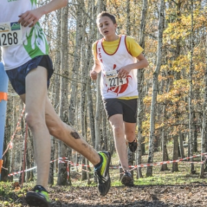 """Cross Hubert André 2016 • <a style=""""font-size:0.8em;"""" href=""""http://www.flickr.com/photos/137596664@N05/31269695556/"""" target=""""_blank"""">View on Flickr</a>"""