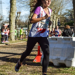 """Cross Hubert André 2016 • <a style=""""font-size:0.8em;"""" href=""""http://www.flickr.com/photos/137596664@N05/30937236230/"""" target=""""_blank"""">View on Flickr</a>"""