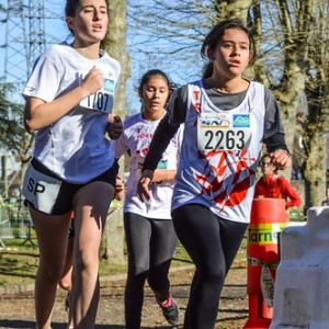"""Cross Hubert André 2016 • <a style=""""font-size:0.8em;"""" href=""""http://www.flickr.com/photos/137596664@N05/31161259692/"""" target=""""_blank"""">View on Flickr</a>"""