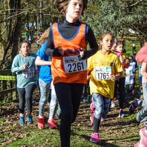 """Cross Hubert André 2016 • <a style=""""font-size:0.8em;"""" href=""""http://www.flickr.com/photos/137596664@N05/30485437134/"""" target=""""_blank"""">View on Flickr</a>"""