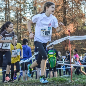 """Cross Hubert André 2016 • <a style=""""font-size:0.8em;"""" href=""""http://www.flickr.com/photos/137596664@N05/30936309330/"""" target=""""_blank"""">View on Flickr</a>"""