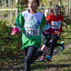 """Cross Hubert André 2016 • <a style=""""font-size:0.8em;"""" href=""""http://www.flickr.com/photos/137596664@N05/31193350051/"""" target=""""_blank"""">View on Flickr</a>"""