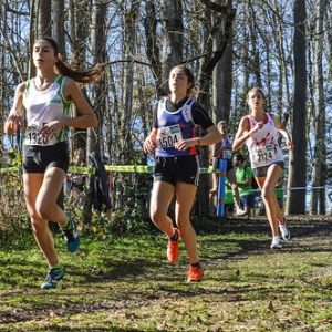 """Cross Hubert André 2016 • <a style=""""font-size:0.8em;"""" href=""""http://www.flickr.com/photos/137596664@N05/30497644653/"""" target=""""_blank"""">View on Flickr</a>"""