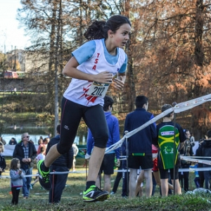 """Cross Hubert André 2016 • <a style=""""font-size:0.8em;"""" href=""""http://www.flickr.com/photos/137596664@N05/31189747281/"""" target=""""_blank"""">View on Flickr</a>"""