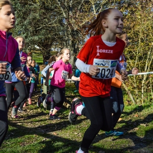 """Cross Hubert André 2016 • <a style=""""font-size:0.8em;"""" href=""""http://www.flickr.com/photos/137596664@N05/31307409355/"""" target=""""_blank"""">View on Flickr</a>"""