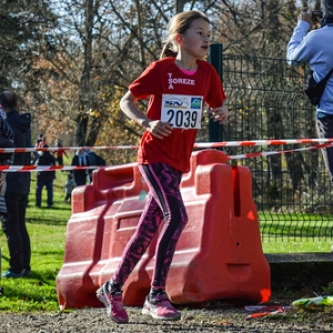 """Cross Hubert André 2016 • <a style=""""font-size:0.8em;"""" href=""""http://www.flickr.com/photos/137596664@N05/31162760292/"""" target=""""_blank"""">View on Flickr</a>"""