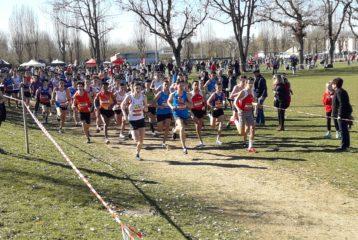 Départ de la course des cadets aux championnats d'Occitanie de cross 2019 à Caussade